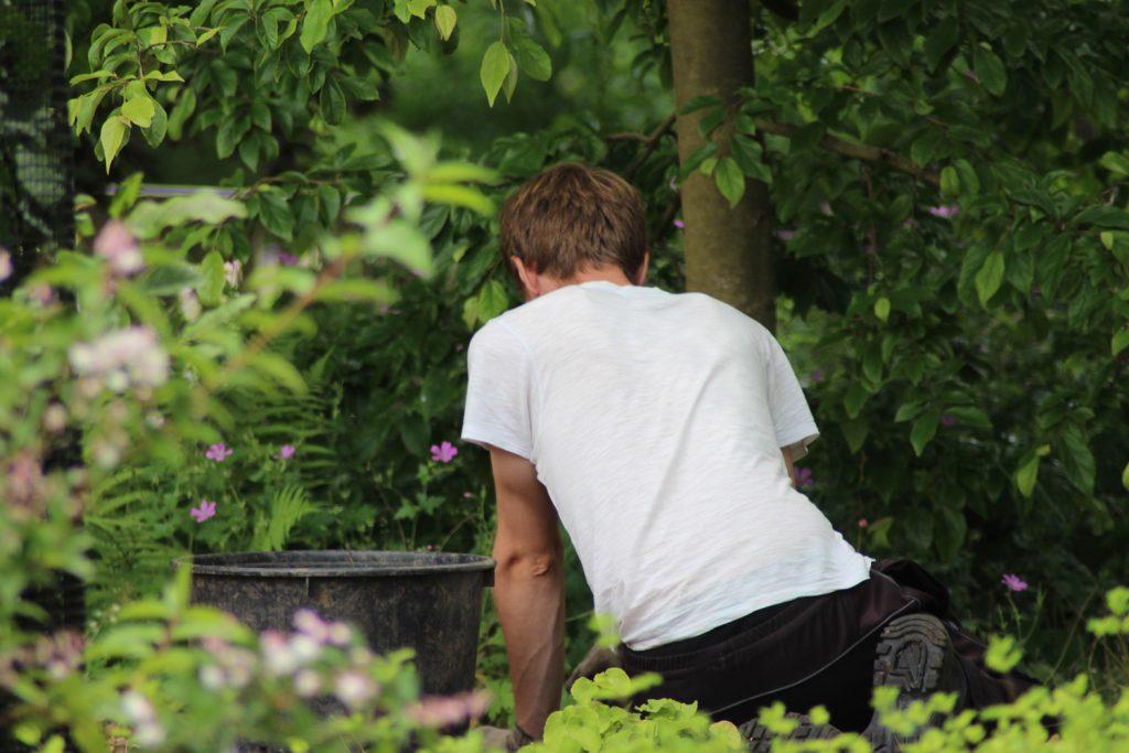 Gardening-Tips-001