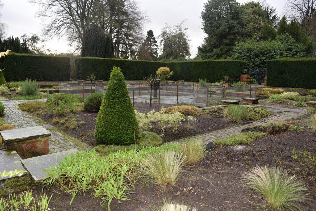 Blog-2---Sylvias-Garden-is-tidy