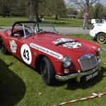 Sports Cars in the Park